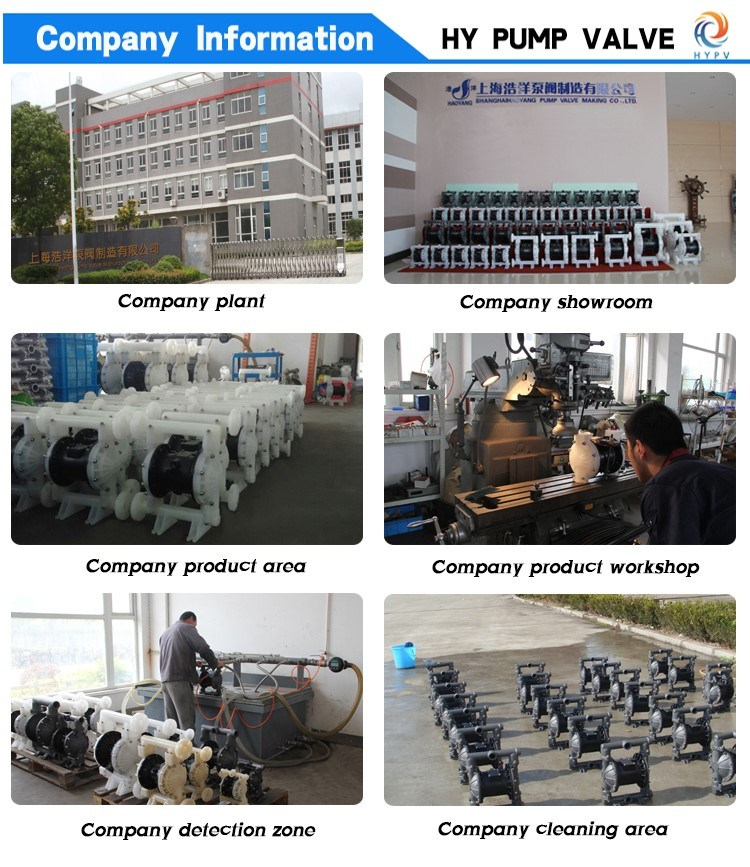 High Quality PVDF Anti-Corrosion Reverse Osmosis Diaphragm Chemical Circulating Pump