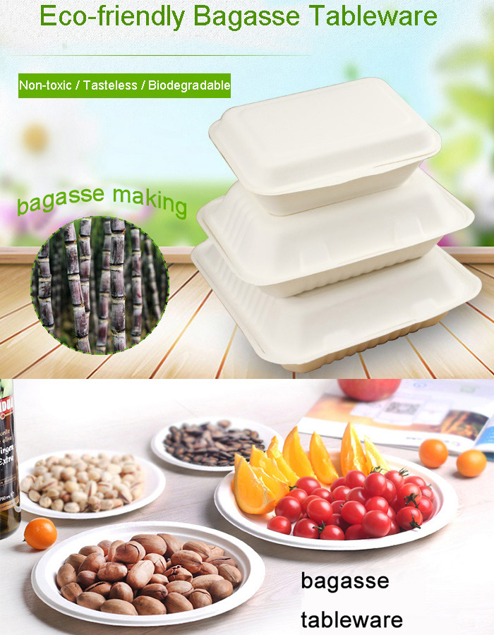 Biodegradable Sugarcane Take Away Hot Soup Salad Bowl Match with Lid