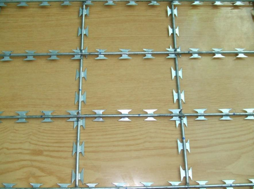 Razor Barbed Wire /Razor Barbed Wire Mesh Fence