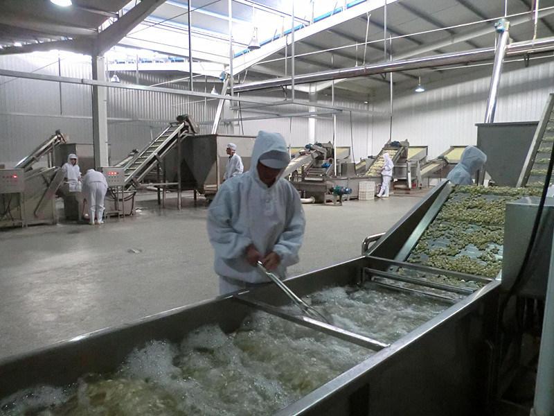 Ad Type Dried 8-16 Mesh Garlic Granule