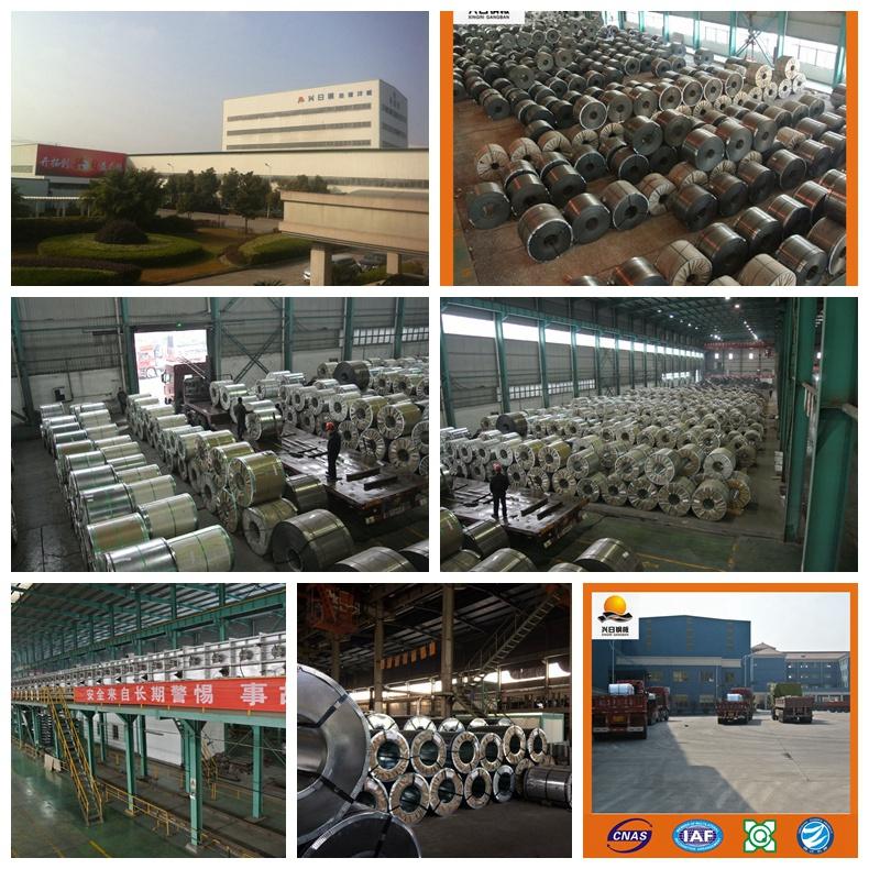 Ss340 G90 Galavanzied Steel Coil Manufactory