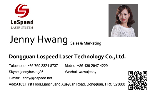 20W Fiber Laser Marking Machine with CCD Camera for Small Chips