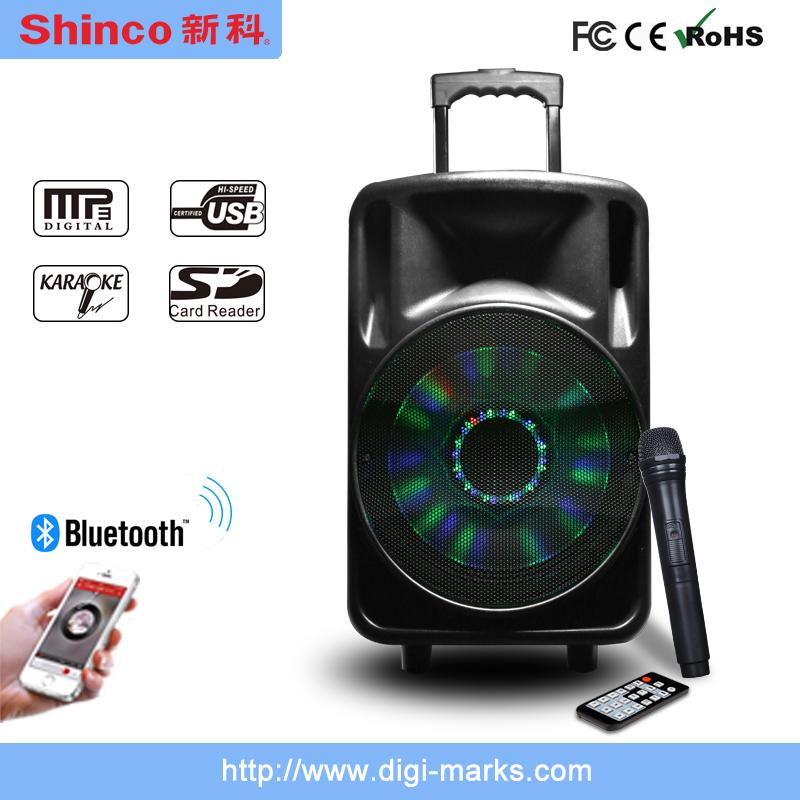 Popular Rechargeable Bluetooth Karaoke Speaker P151