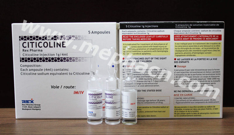 Citicoline Injection 1g/4ml & Actd/Ctd Dossier of Citicoline Injection