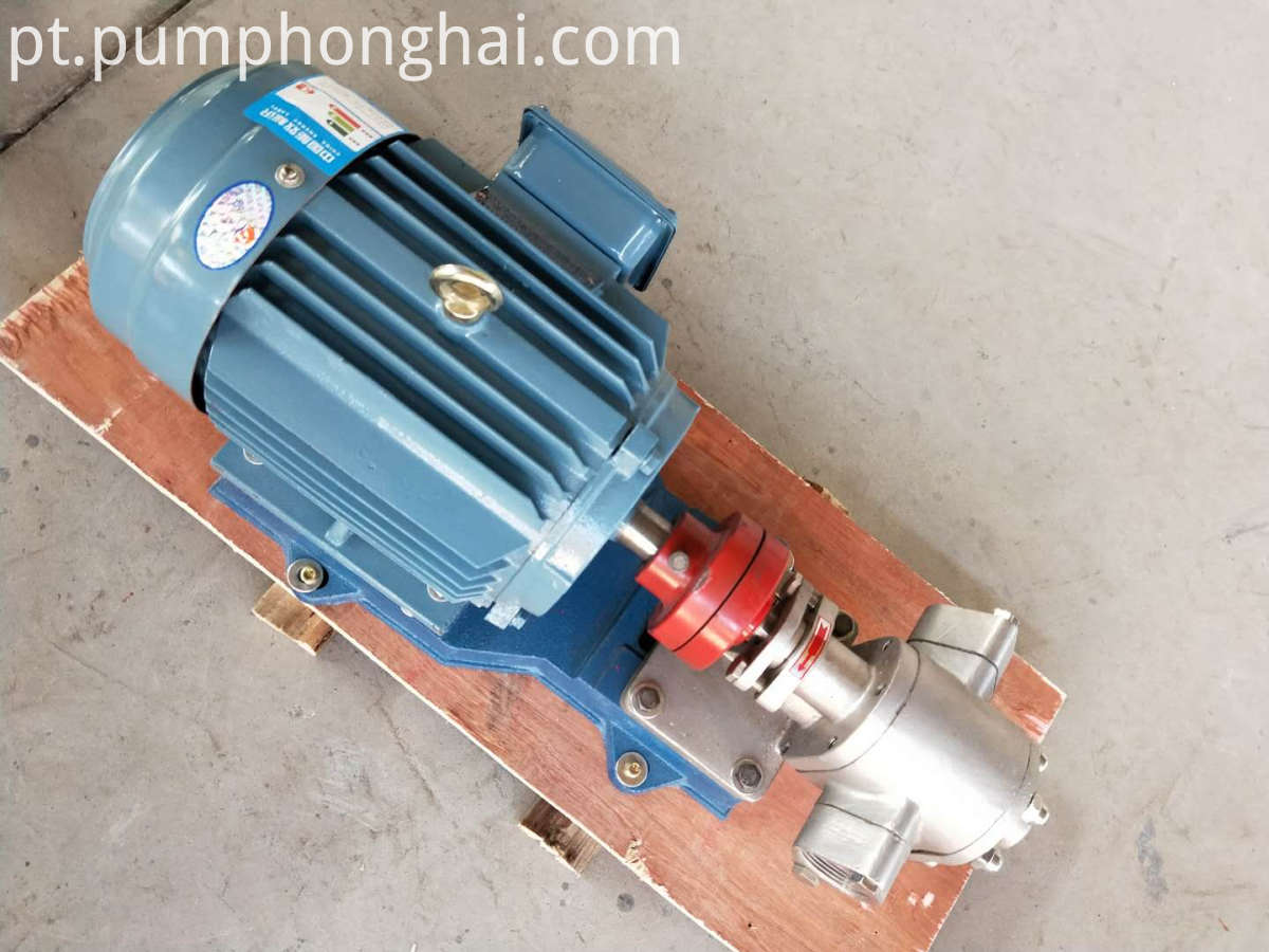 KCB18.3-8.3.3 stainless steel gear pump