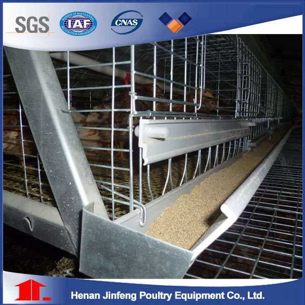 Automatic Poultry Equipment Chicken Cage for Farm Use