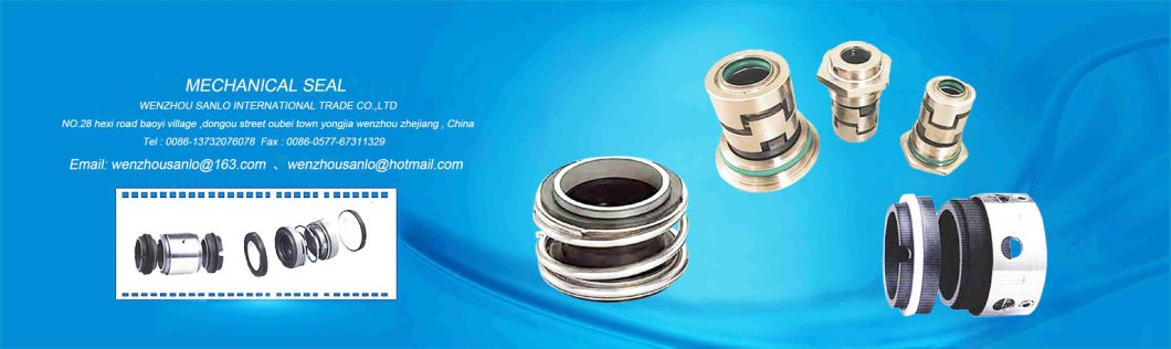 Mechanical Seal Mg1 (Burgmann MG1) with Green Viton for Water Pump
