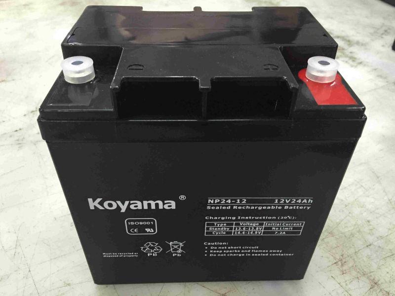 12V 24ah Lead Acid AGM Battery for UPS/Surge Protector