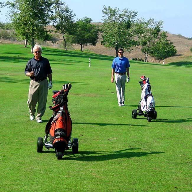 Electric Powered Folding Manual Golf Cart with Brake (DG12150-D)