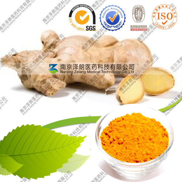 Natural Curcumin Extract Bulk Curcumin Powder