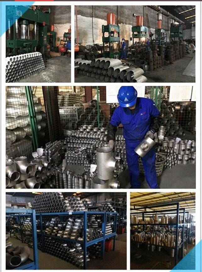 Stainless Steel Manufacturer Stainless Steel Pipe Fitting Butt Weld Bends Elbow