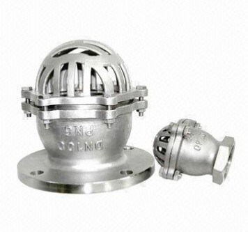 Stainless Steel Check Valve (H42)
