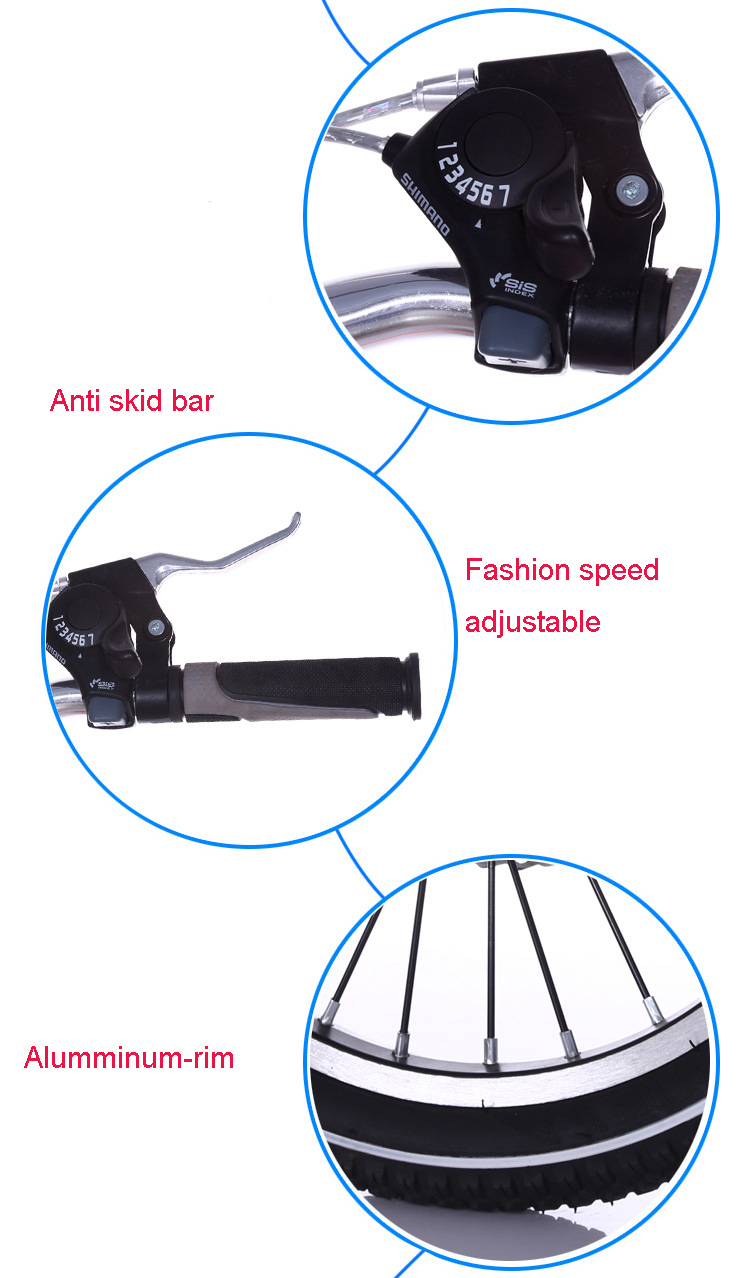 China Wholesale Folding Bike/ Folding Bicycle/Foldable Bike