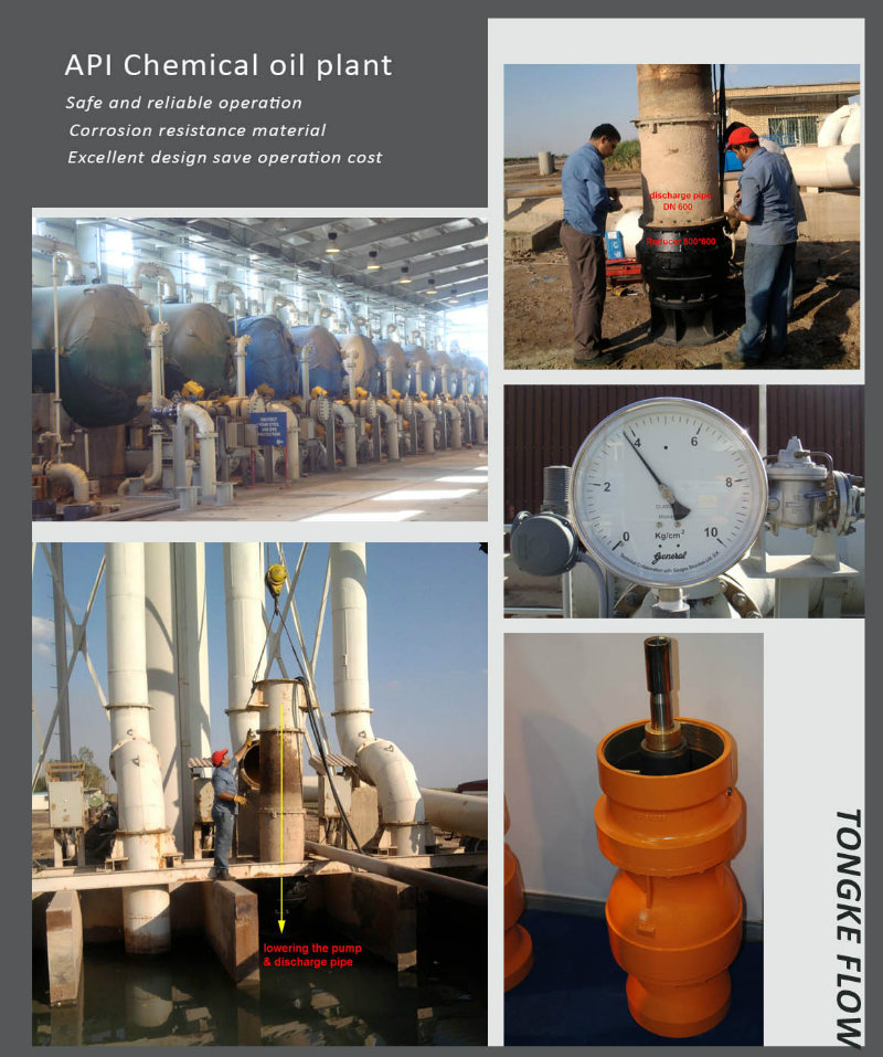 Vertical Turbine Pump for Salt Water