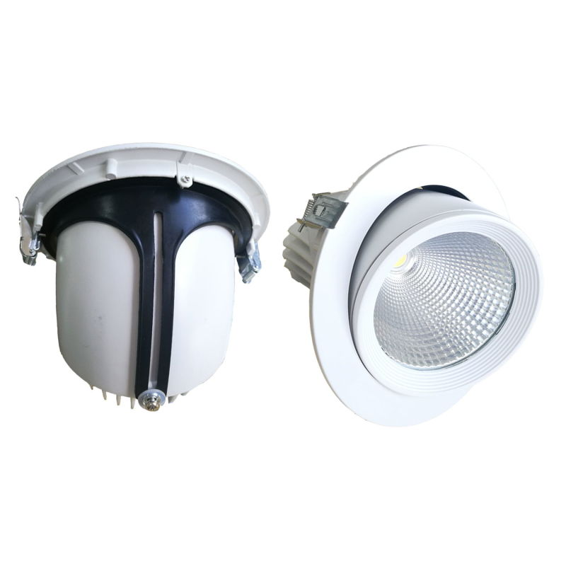High Quality 10W Orientable LED Downlight with 3 Year Warranty