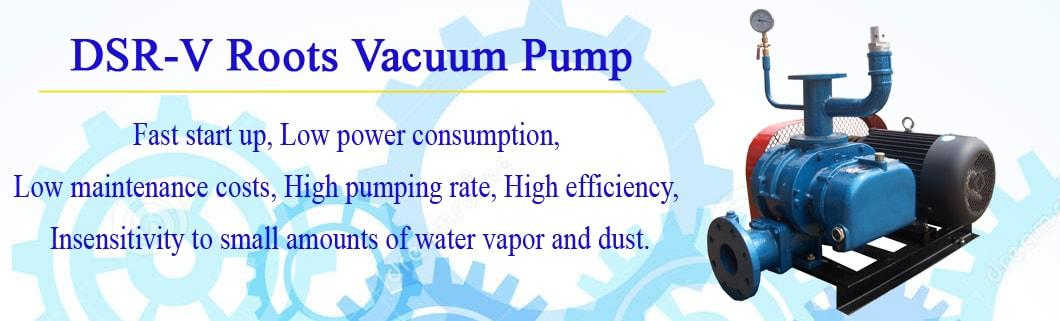 Dsr150V High Quality and High Rotary Speed Dry Type Vacuum Pump Roots Blower for He Iron and Steel Industry