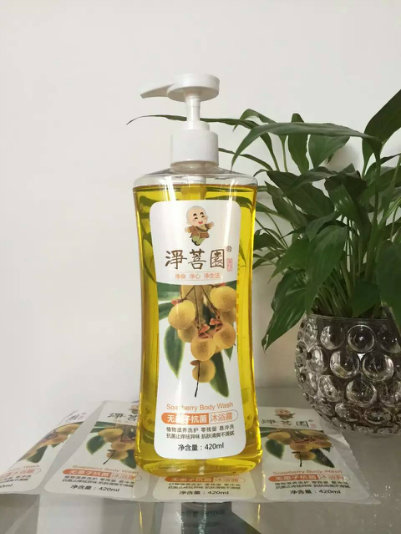 250ml Frosted Pet Plastic Bottle for Cosmetic Liquid Packaging