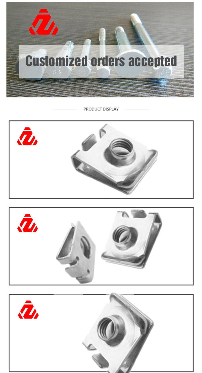 Stainless Steel Clips Nut Made in China