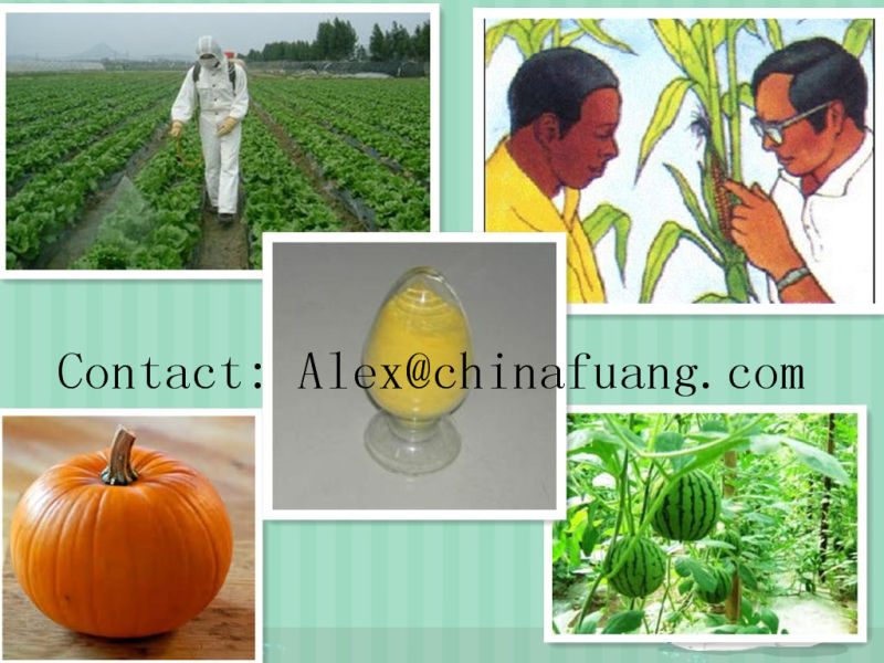 Agricultural Plant Chemicals Agrochemical Bactericide Germicide Fungicide 60207-90-1 Propiconazole