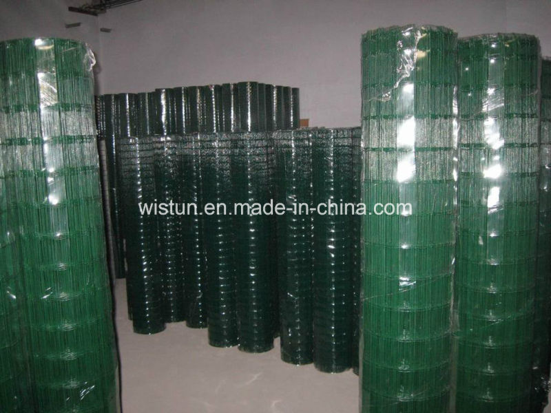 Galvanzied Welded Wire Mesh PVC Coated Welded Wire Mesh Low Price!