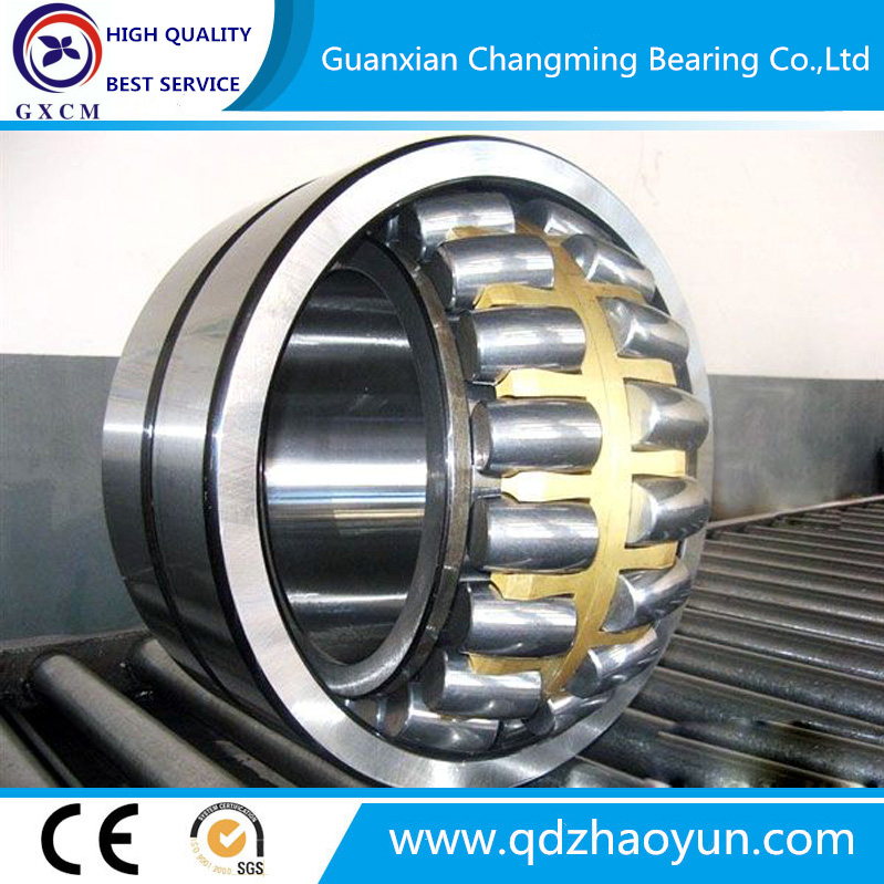 Sealed Bearing BS2-2205-2CS BS2-2206-2CS Spherical Roller Bearing