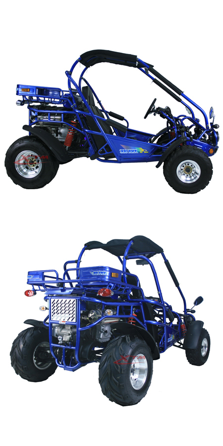 2 Seat EEC Racing Road Right Hand Drive Dune Buggy