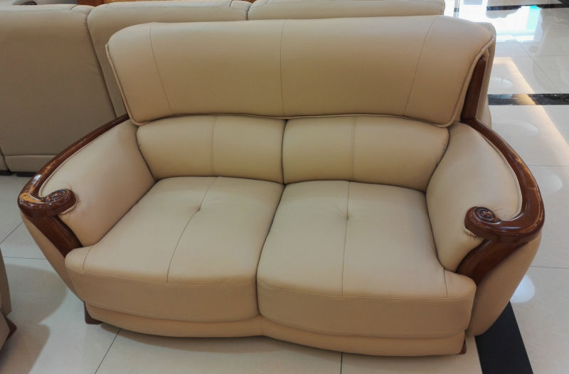 Wooden Sofa, Leather Sofa, Combination Sofa, China Sofa (A59)