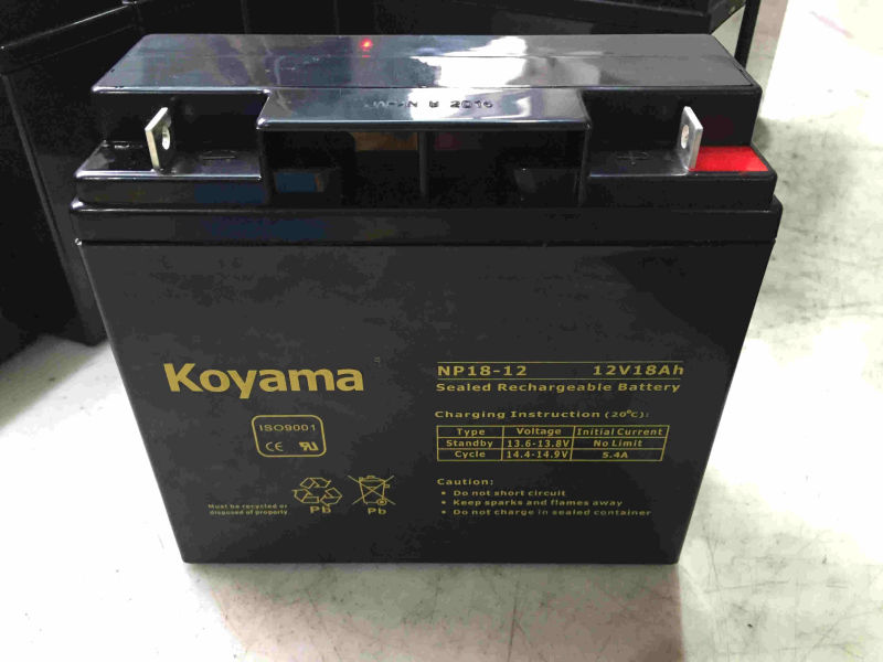 12V 18ah Lead Acid AGM Battery for Utility Vehicle