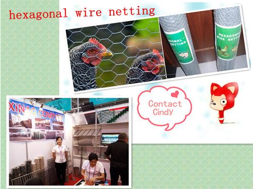 Mallas Hexagonales En Alambre/Hexagonal Netting