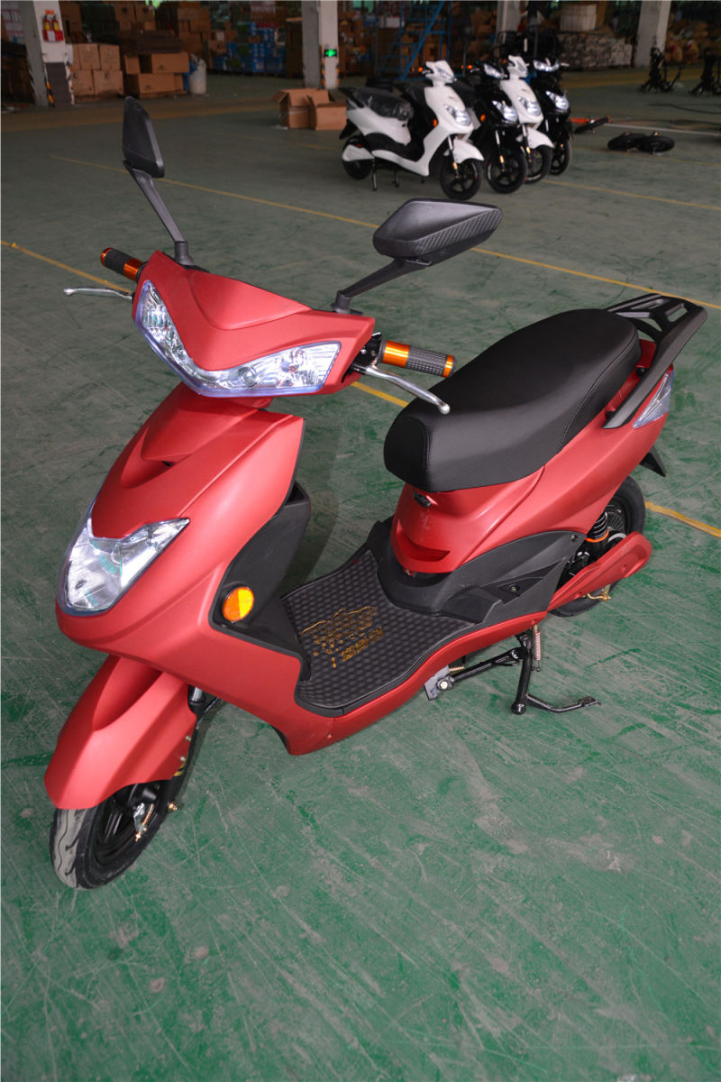 High Quality Electric Motorbike with Different Colours