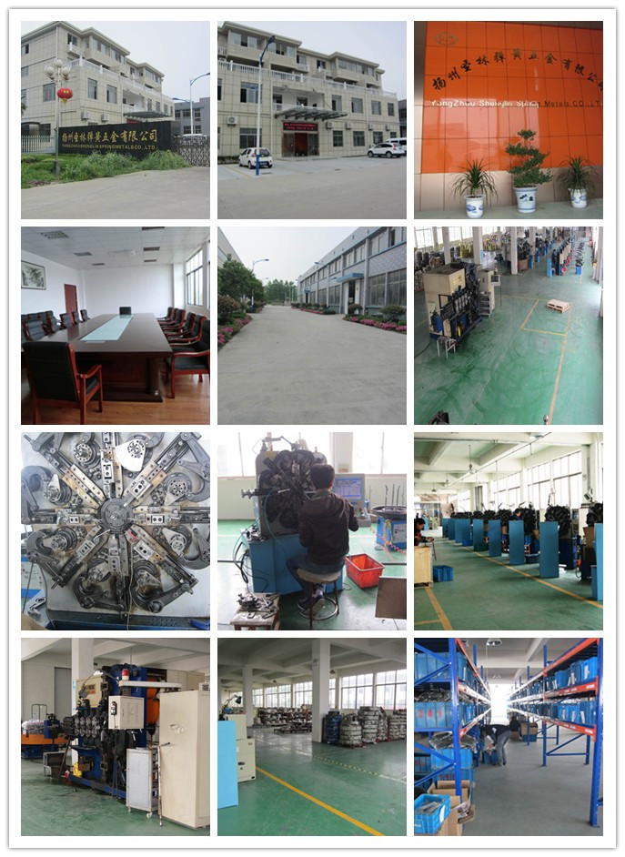 Yangzhou Slth Power Spring Flat Spiral Spring with High Quality