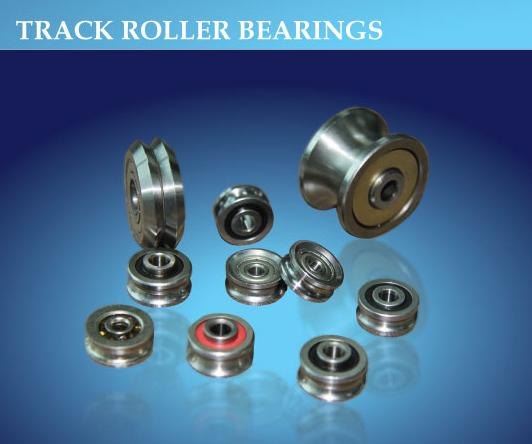 Using Track Transport Track Roller Bearings (RM 2 ZZ)