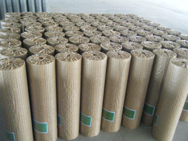 Galvanized Welded Wire Mesh Panel in Chinna