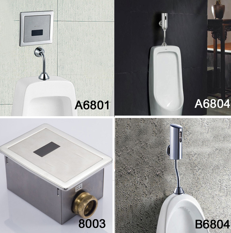 Concealed Install Auto Toilet Flusher (FDS-8002)