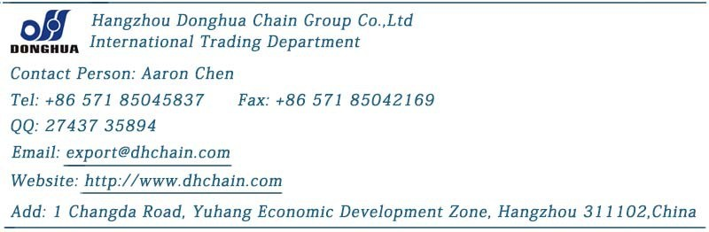 Double Pitch Chain with Small Roller - C2050