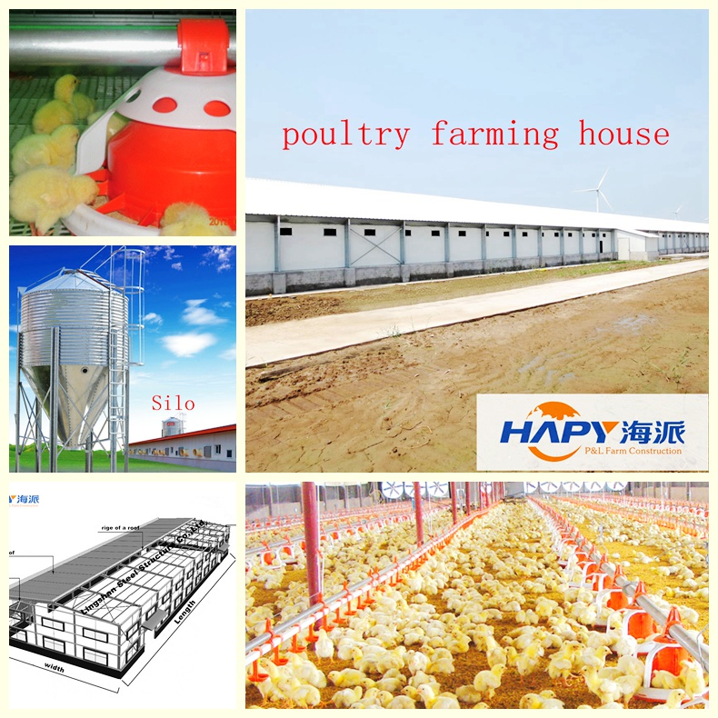 Chicken Farm Incinerator in Poultry House From Super Herdsman