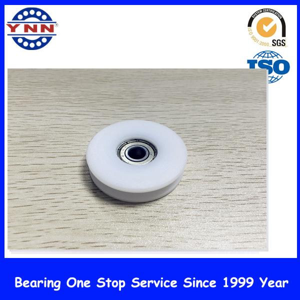 White Plastic Coated Deep Groove Ball Bearing (BSU 10X45X21mm)