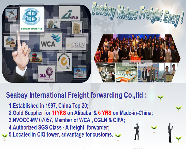 Ningbo Container Shipping Sea Shipping Agent to Doha