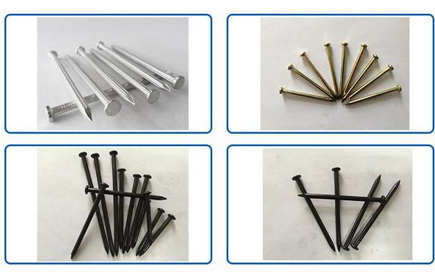 Common Wire Iron Nails Manufacture in China