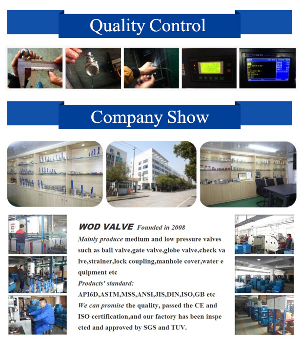 2PC Carbon Steel Ball Valve (WCB)
