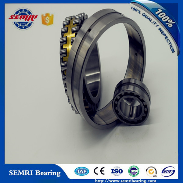 Zys Chrome Steel Cylindrical Roller Bearing (NU418)