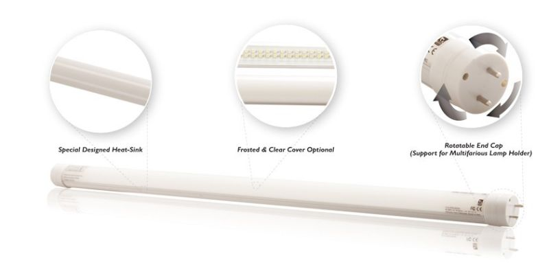 T8 22W LED Tube Light with Clear and Frosted Cover