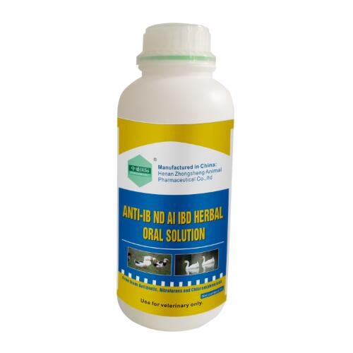 ANTI-IB ND FLU IBD ILT ORAL SOLUTION