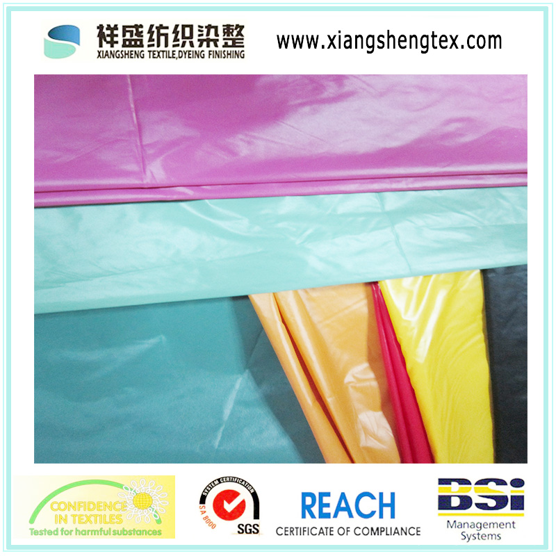 20d Nylon Taffeta Fabric for Down Coat (XSN002)