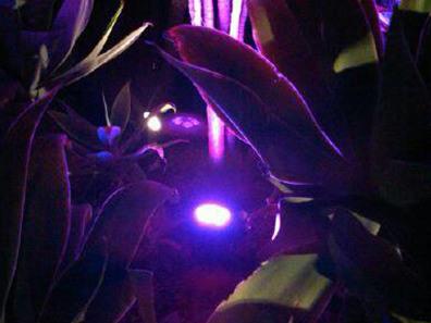 15W IP65 Landscape LED Garden Spot Lights
