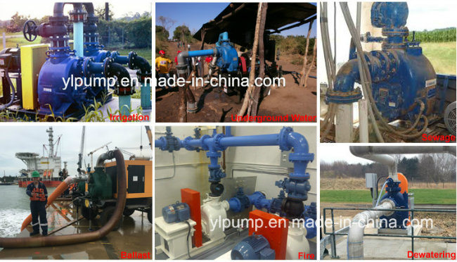 2 Inch Single Suction Self Priming Centrifugal Pump