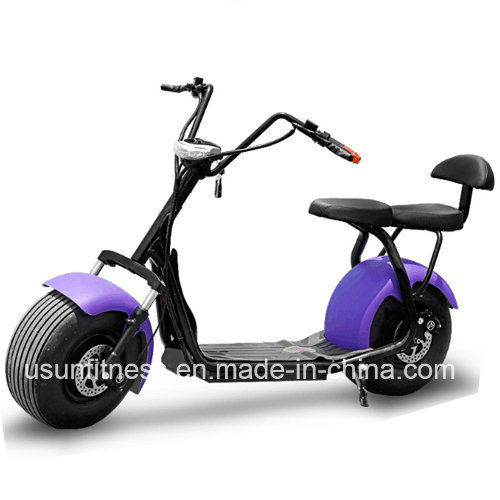 Newest Two Seat Electric Scooter 2 Wheel Fat Tyre Citycoco with Double Removable Battery