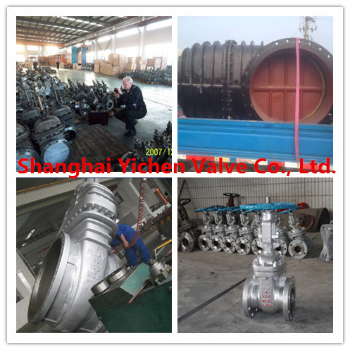 Extended Stem Bellows Sealed Forged Steel Flanged Gate Valve (BWZ41H)