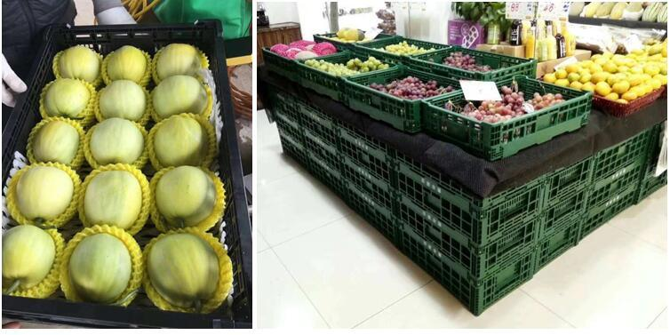 Foldable and Collapsible Mesh Plastic Crates for Fruit and Vegetables