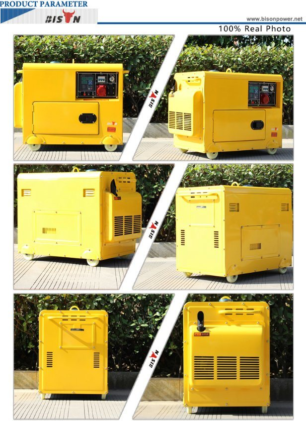 Bison (China) BS7500dse 6kw 1 Year Warranty Small MOQ Fast Delivery OEM Factory Diesel Generator Price in Brazil for Sale